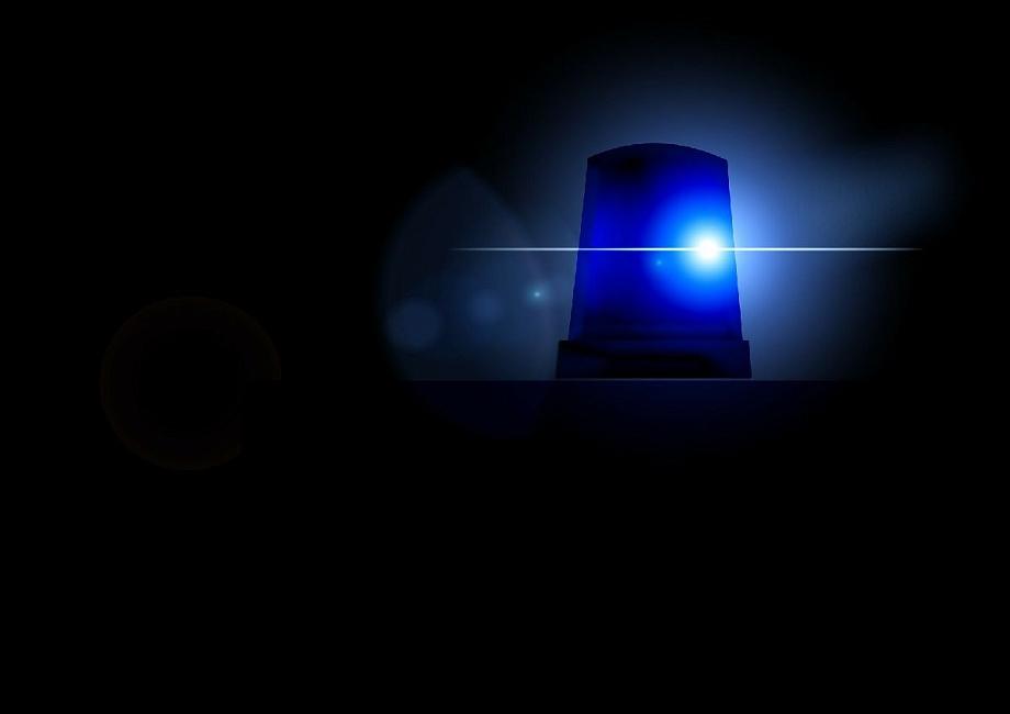 Двух владимирцев обвиняют в убийстве работодателя