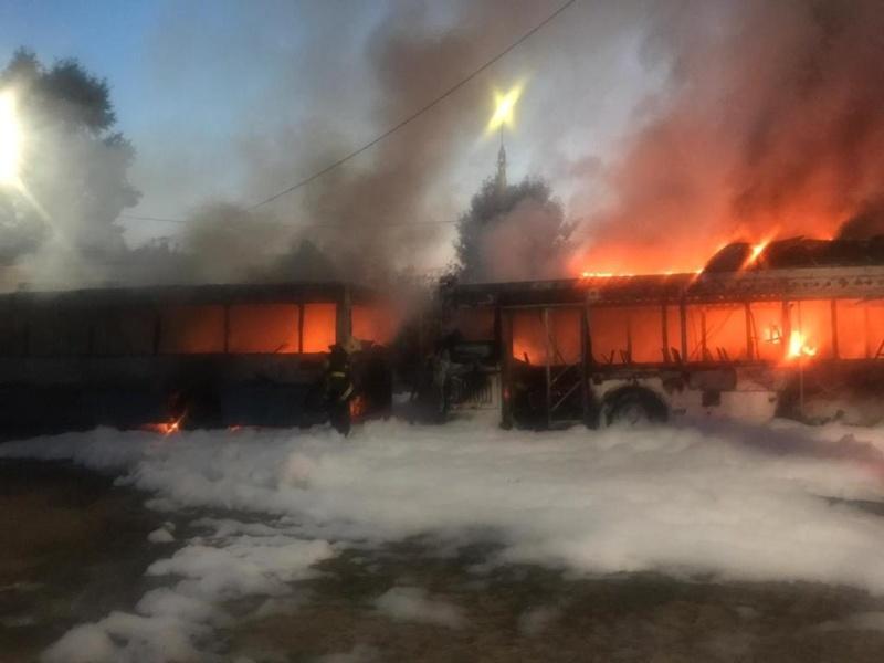 Причиной пожара, на котором сгорели 5 автобусов во Владимире, мог стать поджог