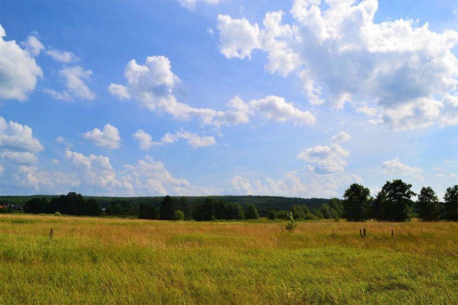 20 августа в 33 регионе ожидается последний день жары