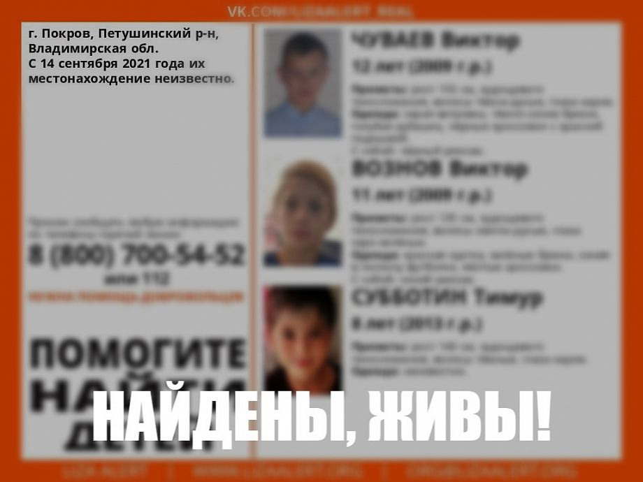Пропавшие во Владимирской области дети найдены на территории соседнего региона